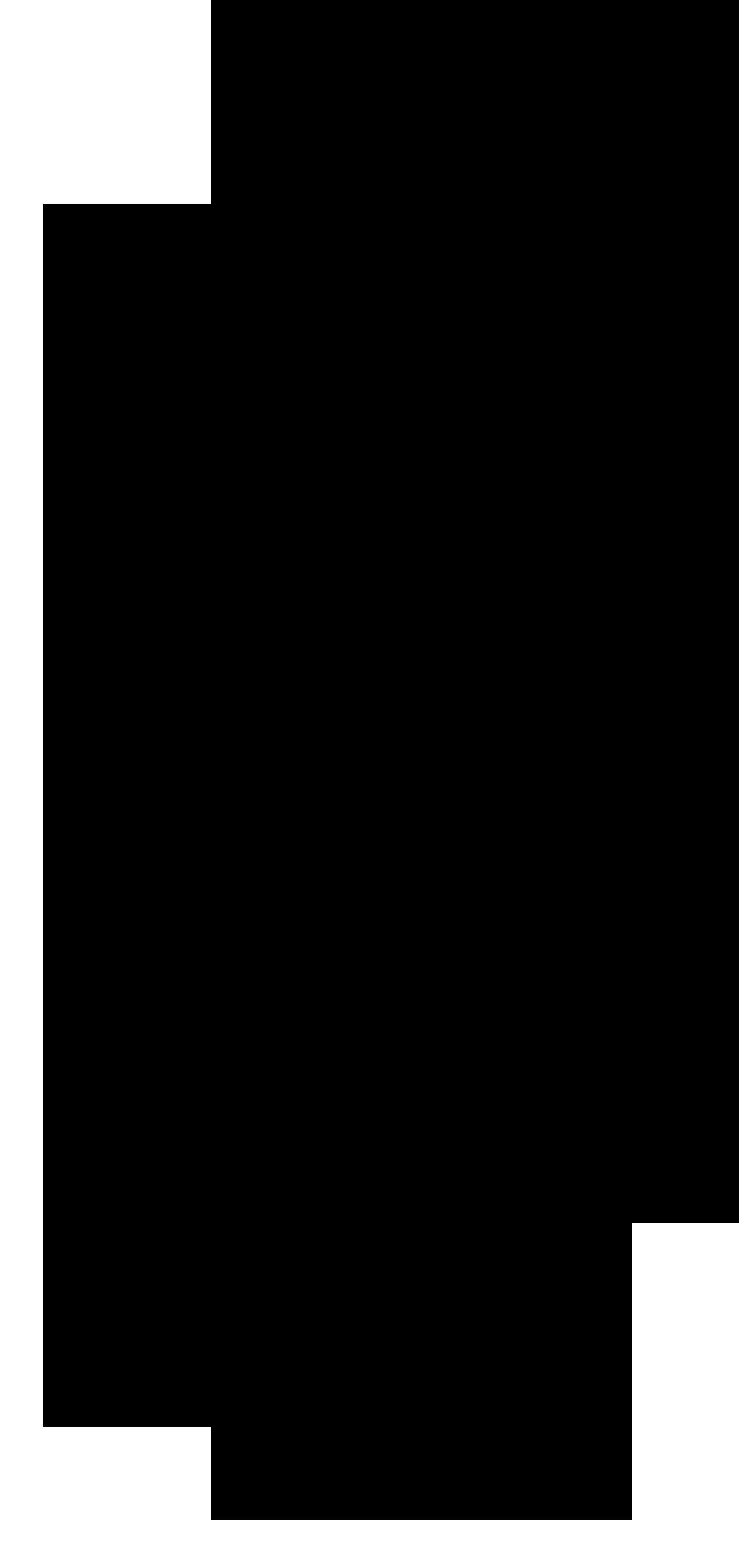 logo_miss_stars_rus